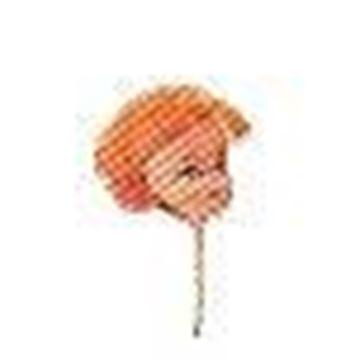 "1"" Plastic Doll Heads"